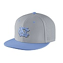 Nike Vapor Authentic Baseball Flat Bill Fitted Hat (Grey/CB)