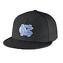 Nike Players True Swoosh Flex Hat (Black)